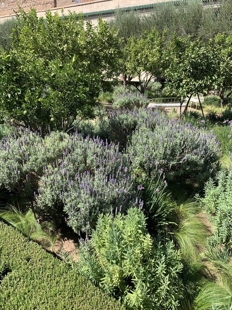 The Secret Garden, Marrakech  | Photo taken by Rod K