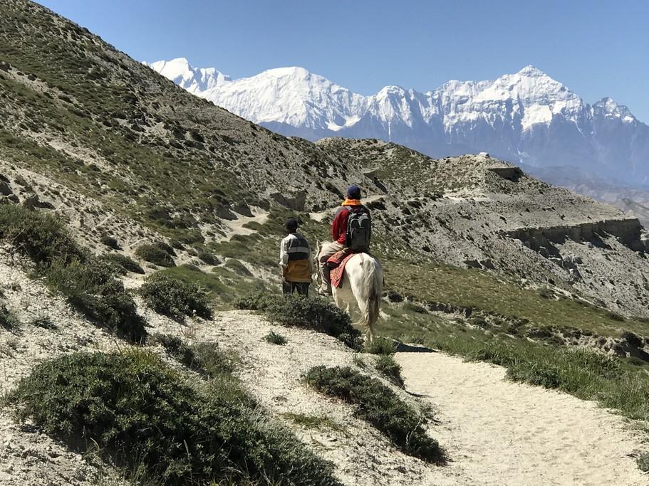 Alan on horseback with Himalayas  | Photo taken by Lisa D