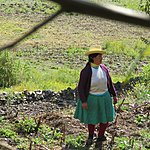 Quechua woman in the field | Photo taken by Kristin M