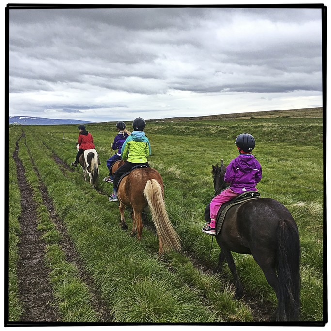 Riding at Gauksmyri Lodge & Horse Center | Photo taken by Gail D