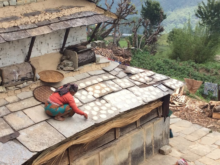 Harvesting swirls of rice noodles set on the roof to dry, Ghandruk village | Photo taken by Peter A
