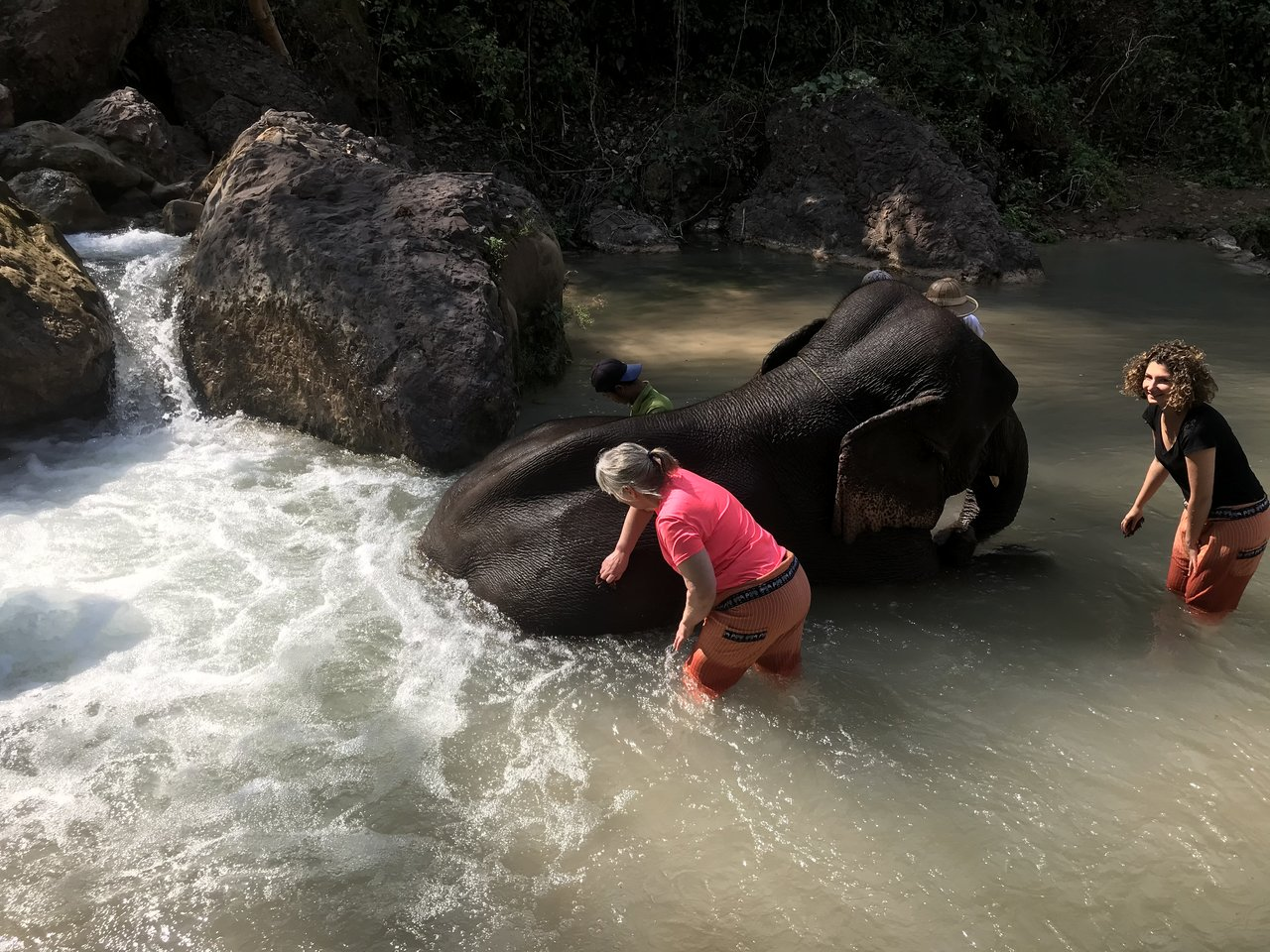 My favourite activity was bathing an elephant | Photo taken by Bonnie S