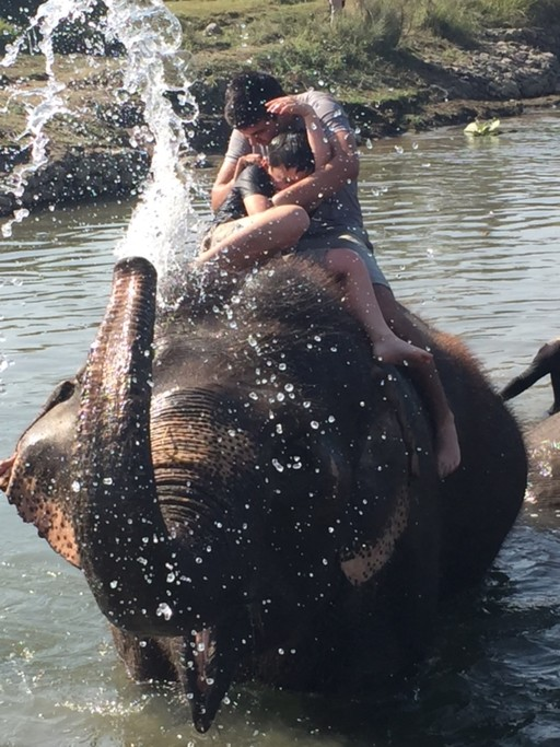 Chitwan elephant bathing | Photo taken by Kaniez C