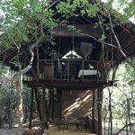 The treehouse, Sigiriya   Photo taken by Andrew H