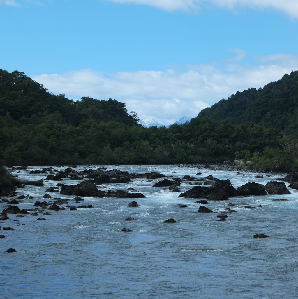 Petrohue River | Photo taken by Beth S