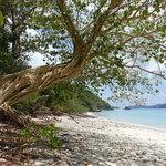 Mergui Archipelago | Photo taken by Liz S