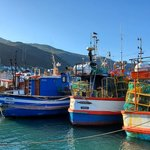 kalk bay | Photo taken by lilia s