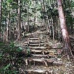 Trail | Photo taken by Joost S
