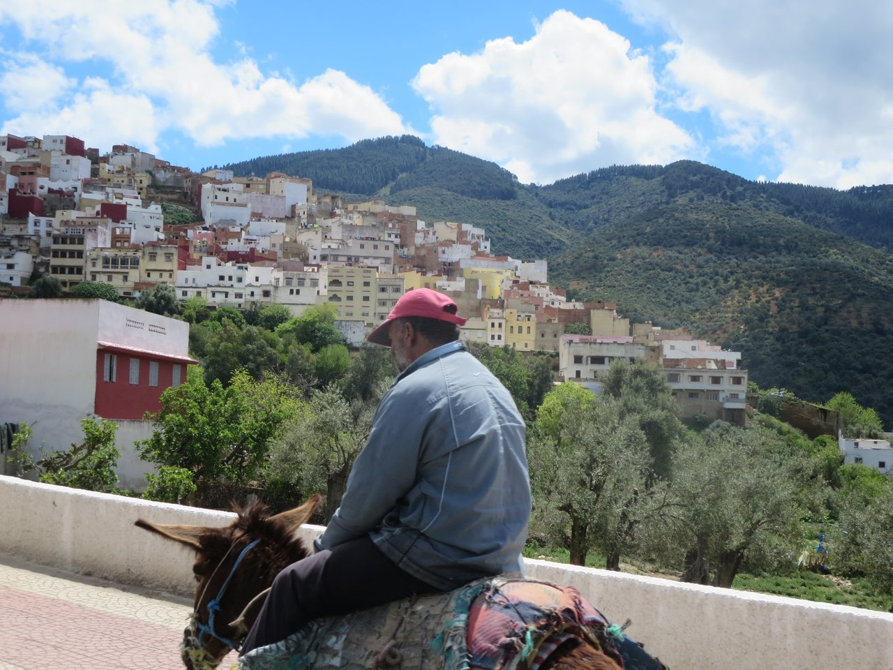 Overlooking Moulay Idriss | Photo taken by Eileen S
