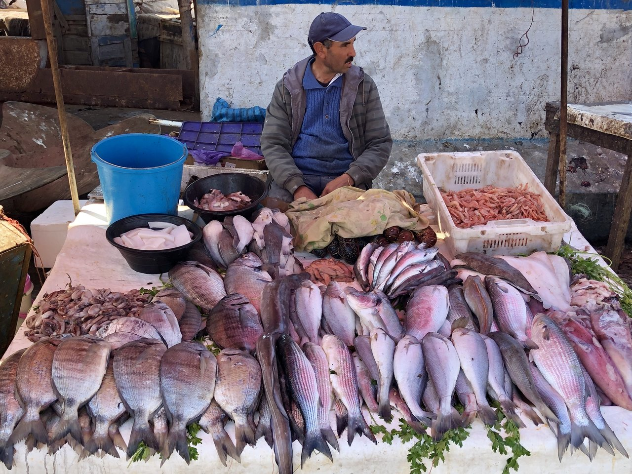 Fish market  | Photo taken by Alta P