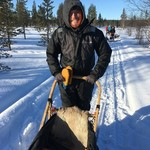 Dogsledding in Kirkenes | Photo taken by Wayne E