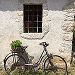 Not our bike | Photo taken by Jennifer F