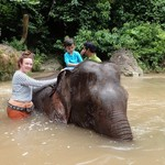 Washing Elephants - Green Valley   Photo taken by Rand M