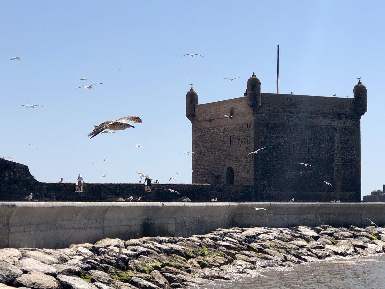 Essaouira  | Photo taken by Alta P
