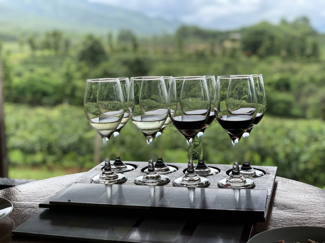 Wine tasting at Red Mountain Estate Vineyards and Winery | Photo taken by Su-Lin T
