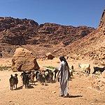 Wadi Rum | Photo taken by Nicola H