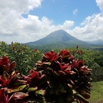 Monteverde  | Photo taken by Federica M