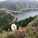 Hike near San Sebastian | Photo taken by Amelia B