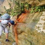 fresh springs everywhere in the wadi | Photo taken by fern k