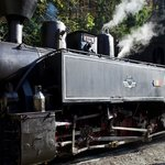 Steam Train   Photo taken by Joseph D