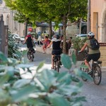 Riding bicycles through Provence