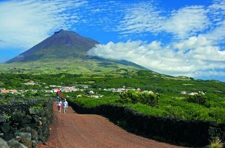 Guided tour around Pico island landscape