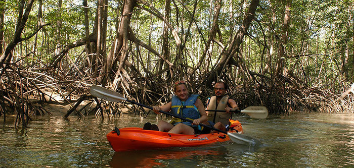 Kayak in the mangrove to Damas Island