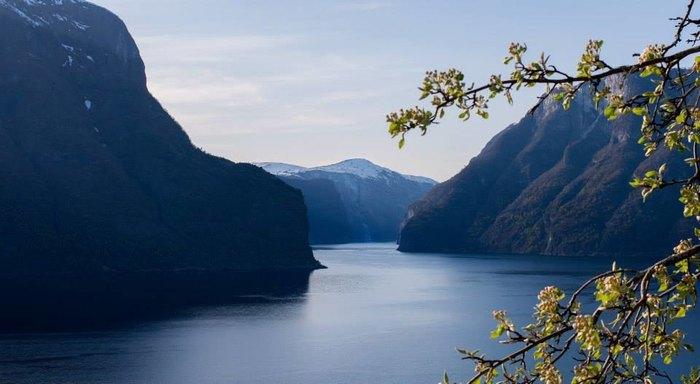 FjordSafari and farewell Norway