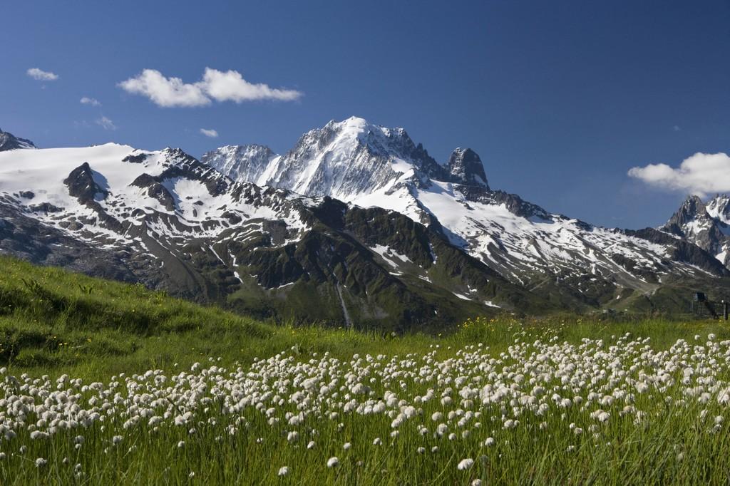 From Col de Balme view on Aiguille Verte