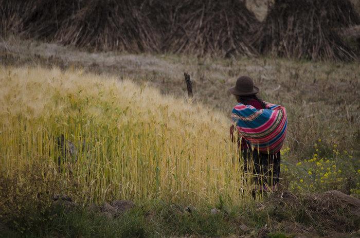 Cusco – Puno