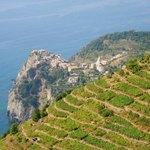 Sunset e-Bike Wine Tour in Cinque Terre