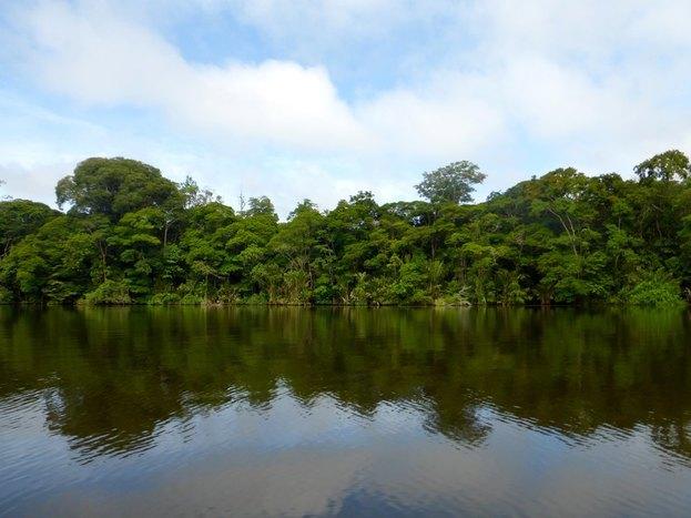 Torturguero Village and National Park Tour