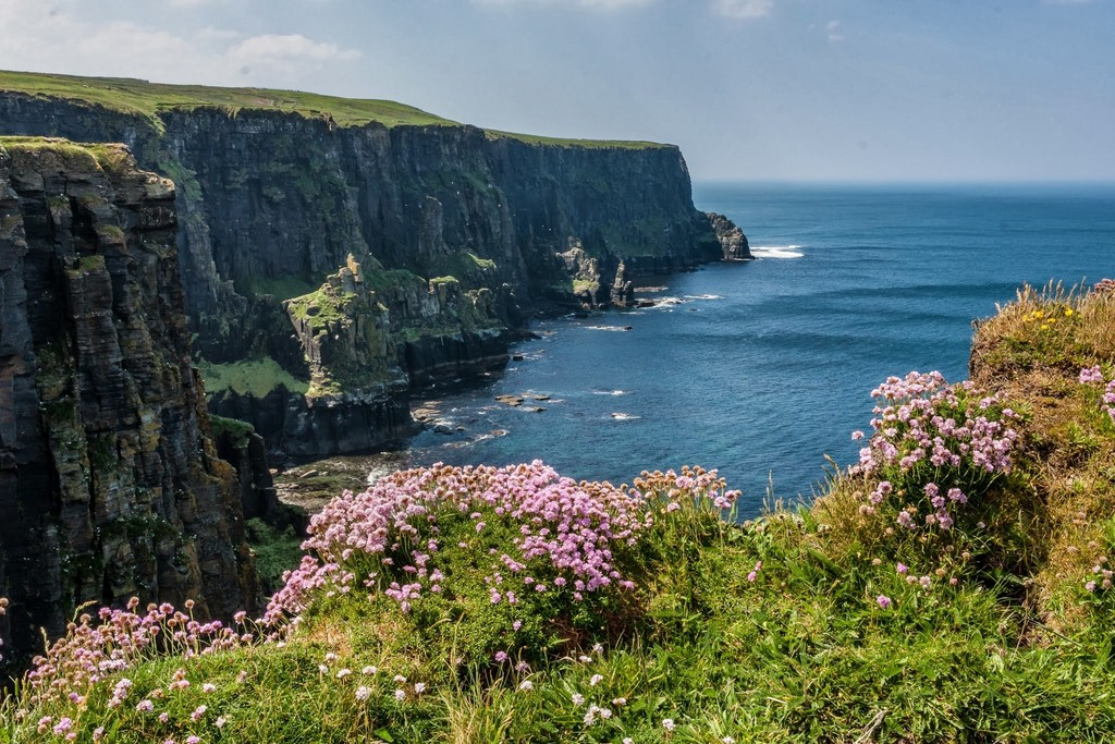 Cliffs in bloom