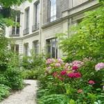 Hidden garden in Le Marais