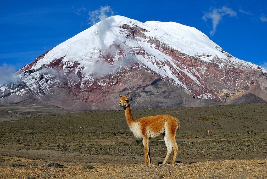 Acuña in front of Mt. Chimborazo