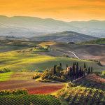 Explore the Chianti Vineyards by Vespa