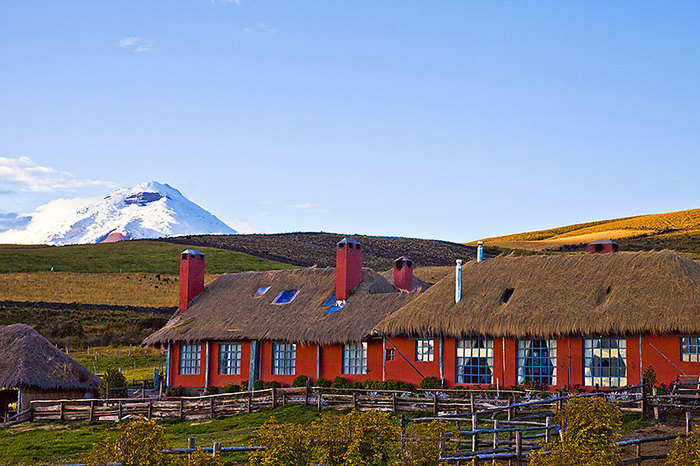 Cotopaxi National Park Day Trip