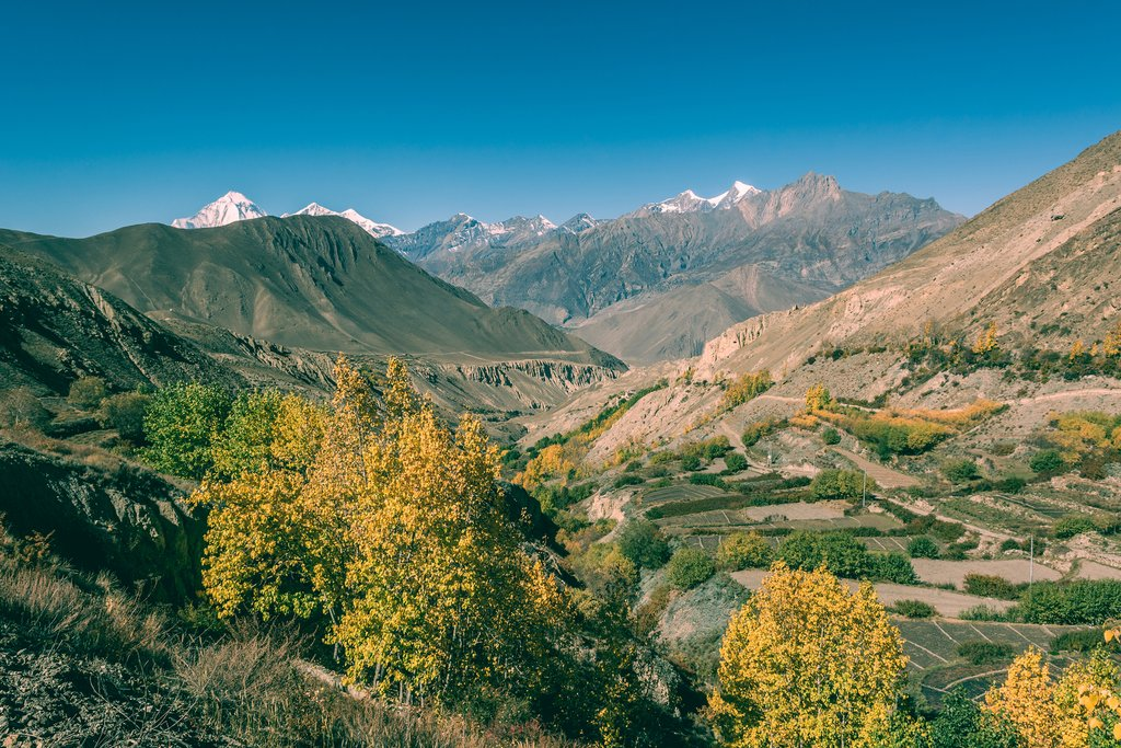 Travel along parts of the Annapurna Circuit