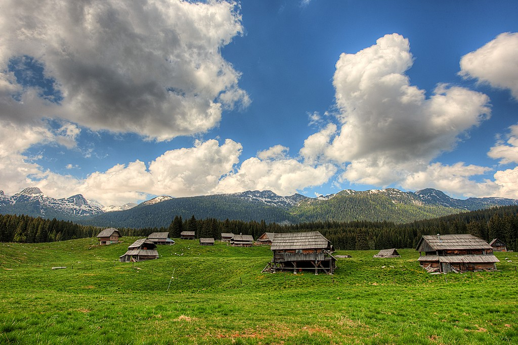 Classic cottages on the Pokljuka Plateau