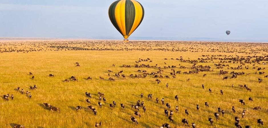 An air balloon on safari