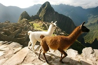 Inca Trail + Machu Picchu, Citadel Excursion