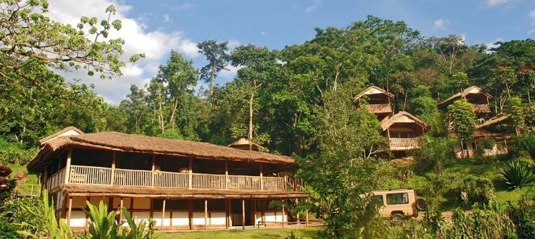 Lodges within Bwindi Impenetrable National Park