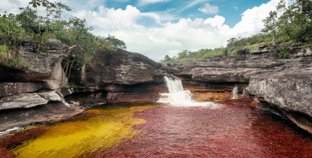 The vivid colors of Caño Cristales