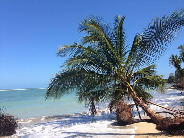 Depart to the South Caribbean Coast