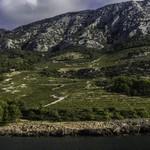 Dingač wine region