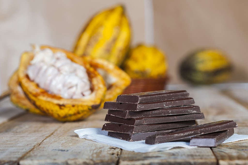Learn how to make chocolate from bean to bar