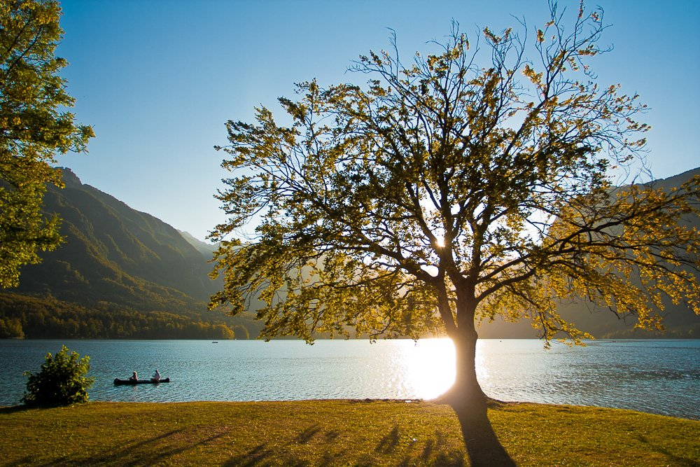 The serene surface of Lake Bohinj