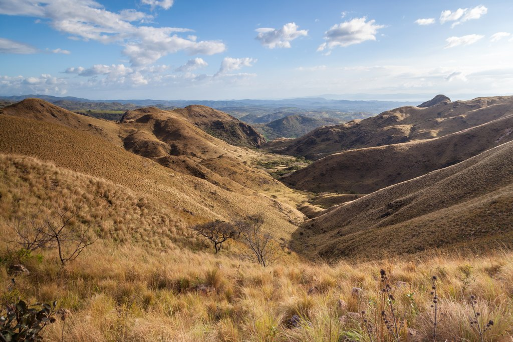 The golden hills and dry forest of Guanacaste Province