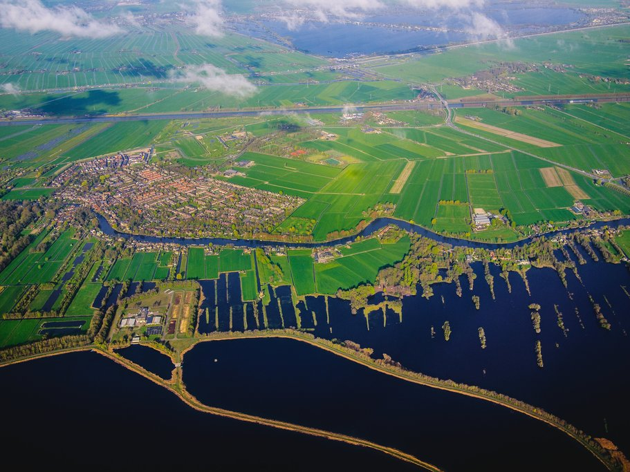 A lush green landscape in the Netherlands