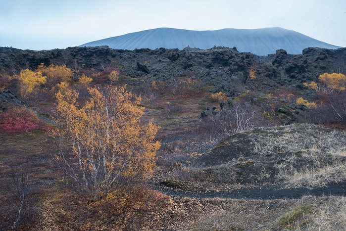 Hverfjall Crater rises in the distance of the Dimmuborgir lava fields
